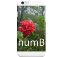 numBeauty iPhone Case/Skin