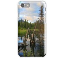 Land Before Time, Hatcher Pass / Willow Alaska iPhone Case/Skin