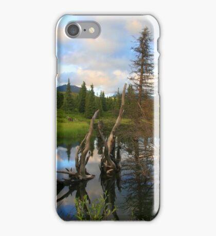 Land Before Time, Hatcher Pass / Willow Alaska iPhone Case/Skin