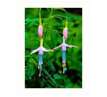 Dancing Flowers, Butchart Gardens, BC Art Print