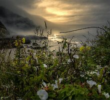 Simple Is Best ~ Oregon Coast by Charles & Patricia   Harkins ~ Picture Oregon