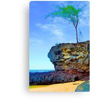 Rocks & Bush, Lamaha'i Beach, Kauai Canvas Print