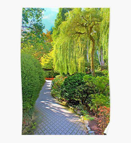 Weeping Willow & Walkway, Buchart Gardens, BC Poster