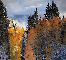Roads of Autumn by Gary Gray