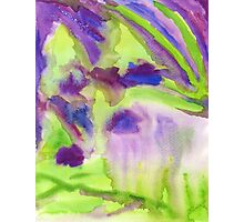Abstract Watercolor Iris Field Purple Blue Green Photographic Print