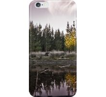 Tranquil Forest iPhone Case/Skin