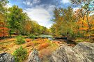 Autumn At The Creek - Green Lane - Pennsylvania - USA by MotherNature