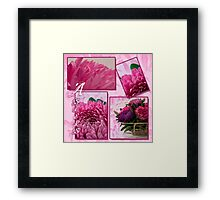 Aster Photo Collage Framed Print