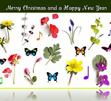 A Christmas Card for the Southern Hemisphere by kathrynsgallery