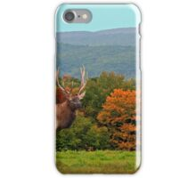 Bull Elk During Rut iPhone Case/Skin