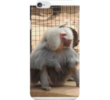 Zoo animal  iPhone Case/Skin