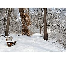 Snow-covered Bench Photographic Print