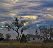All Is Quiet in the Country by Barbara  Brown