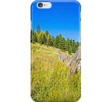 The Fence iPhone Case/Skin