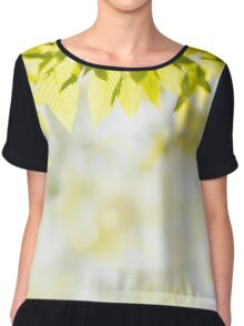 Elm green leaves and blurred space Chiffon Top