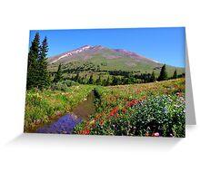 Colorado Summer Greeting Card