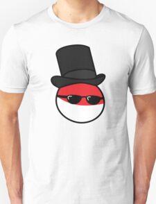Polandball - GentlePoland Big T-Shirt
