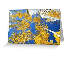 Aspen Filled Sky Greeting Card