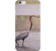 Purple Heron iPhone Case/Skin