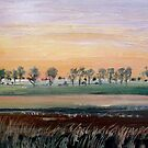From Camooweal Sunset  by Virginia McGowan