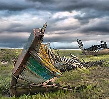 Fleetwood Wreck by Irene  Burdell