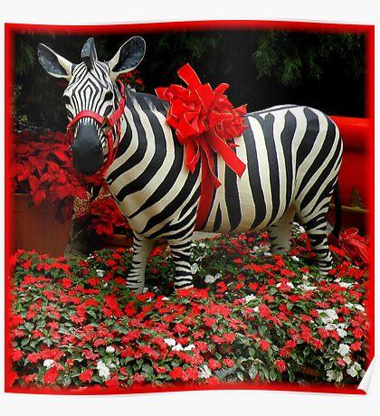 The Zebra's Mockery Poster