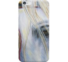 The Lion Tamer iPhone Case/Skin
