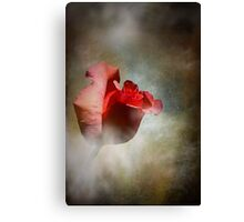 One Single Rose Canvas Print