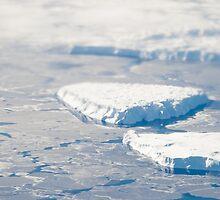 Aerial Antarctica by maddie5