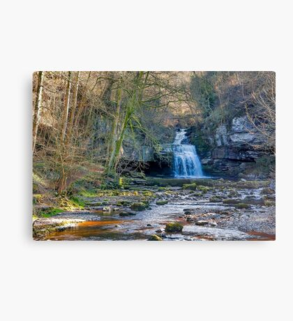 Autumn at Cauldron Falls Canvas Print