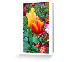 SOLD - TWO TULIPS Greeting Card