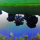 Green Blue Reflections by HeklaHekla