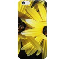 Sunlit Yellow African Daisies iPhone Case/Skin