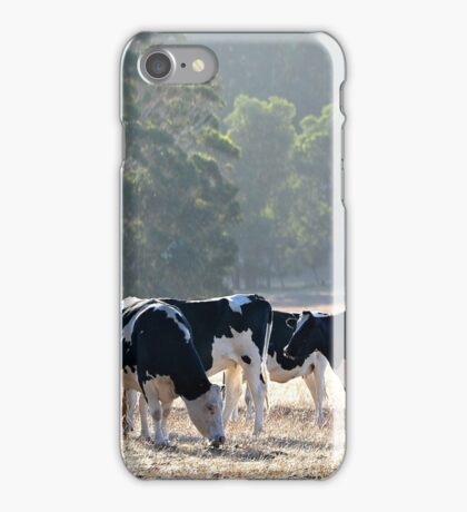Evening Meal iPhone Case/Skin