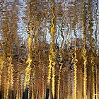 Reflection of Nature by Jo Nijenhuis