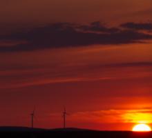 Wind turbines at sunset Sticker
