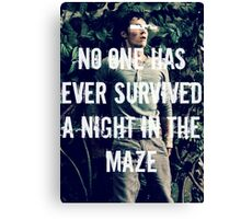 No One Has Ever Survived A Night In The Maze Canvas Print