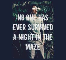 No One Has Ever Survived A Night In The Maze by TheBloodyMaze