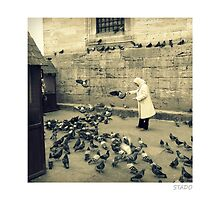 Bird Lady In Istanbul by stado