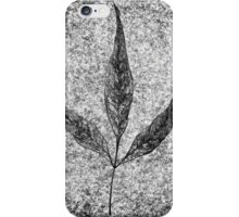 leaf 3 iPhone Case/Skin