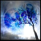 The Magic of Trees by Wendy  Slee