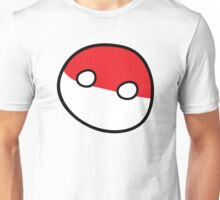 Polandball - Derpy Poland Big Unisex T-Shirt