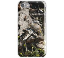 Went on Squirrel Hunt iPhone Case/Skin