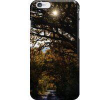Una strada di campagna, Monticchiello, Toscana, Italia iPhone Case/Skin
