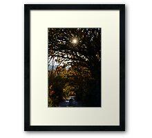 Una strada di campagna, Monticchiello, Toscana, Italia Framed Print