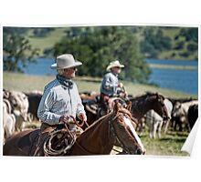 Preparing to herd cattle Poster