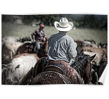 Riding herd Poster
