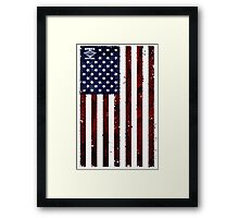 US Snakeskin Flag Framed Print