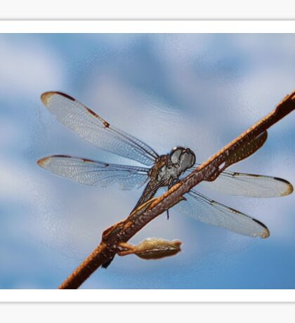 Abstract Dragonfly Sticker