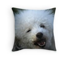cute dog poodle Throw Pillow